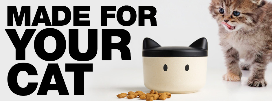 The Best Gifts for your cat - guaranteed