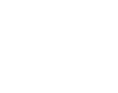 Goldfish Ceramic Pet Bowl