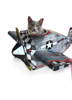 Plane Cat Play house