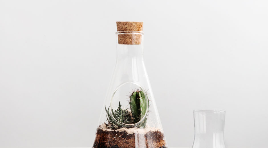 Chemistry Terrarium Kit Custom Lab Flask To Home A Mini