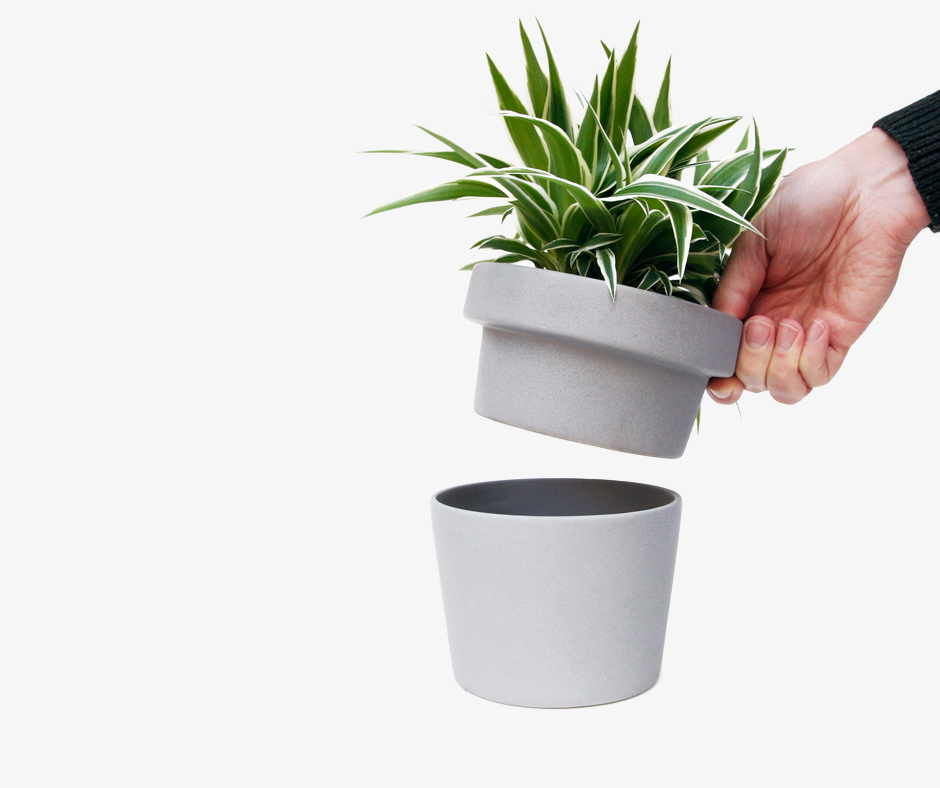 Plant pot hideaway - hand removing top