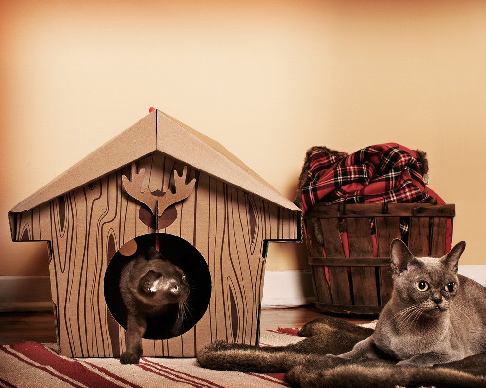 Cat Play House Irresistible Cardboard Toy Houses For Cats