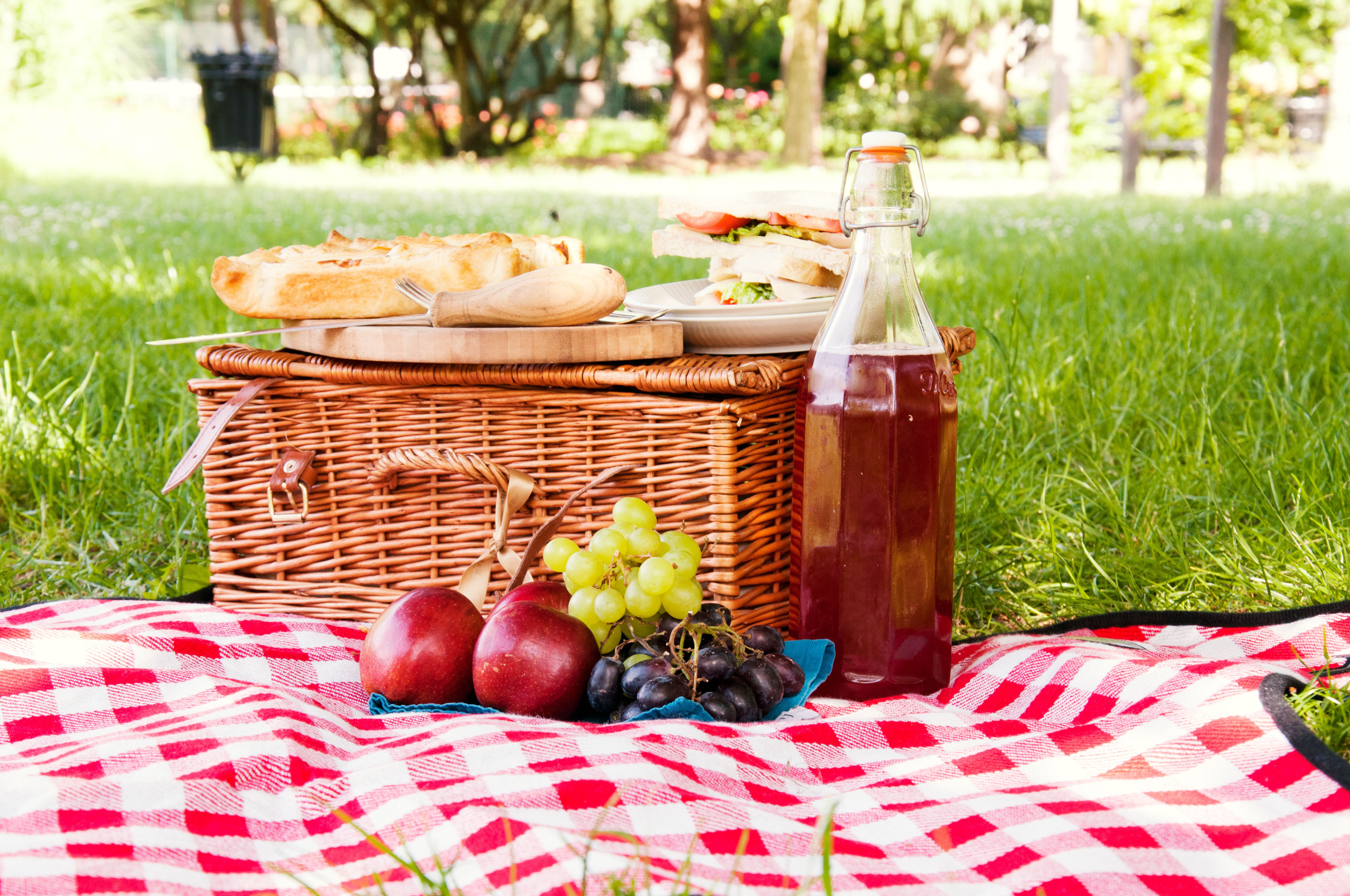 Bear Skin Picnic Blanket Content Gallery Extravagant