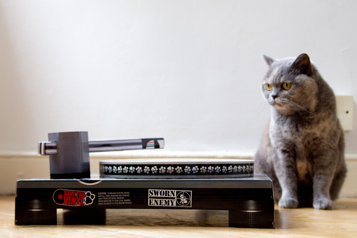 Cat Scratch Turntable : Cardboard DJ turntable scratching cat toy.
