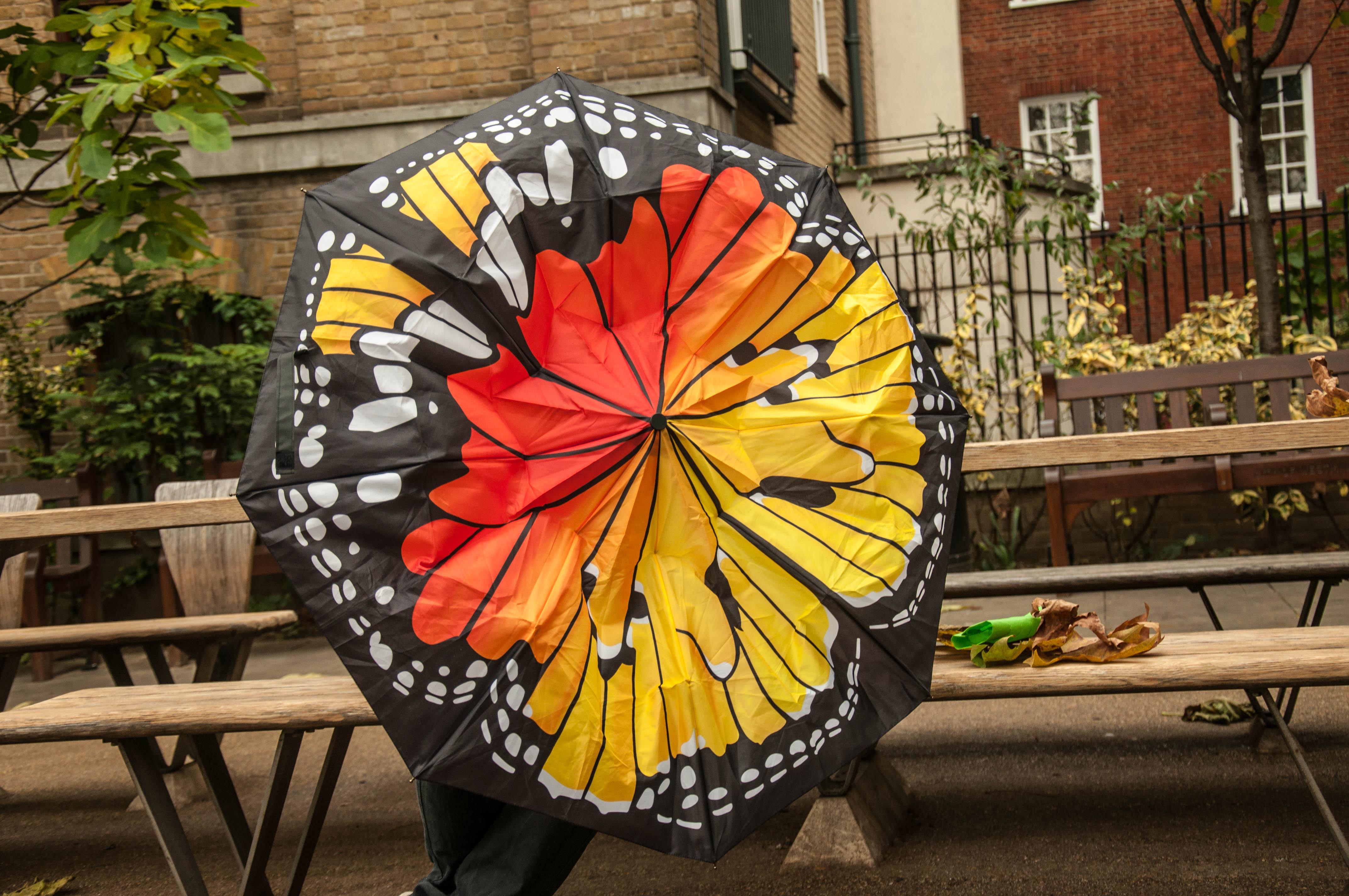 Umbrella suck uk