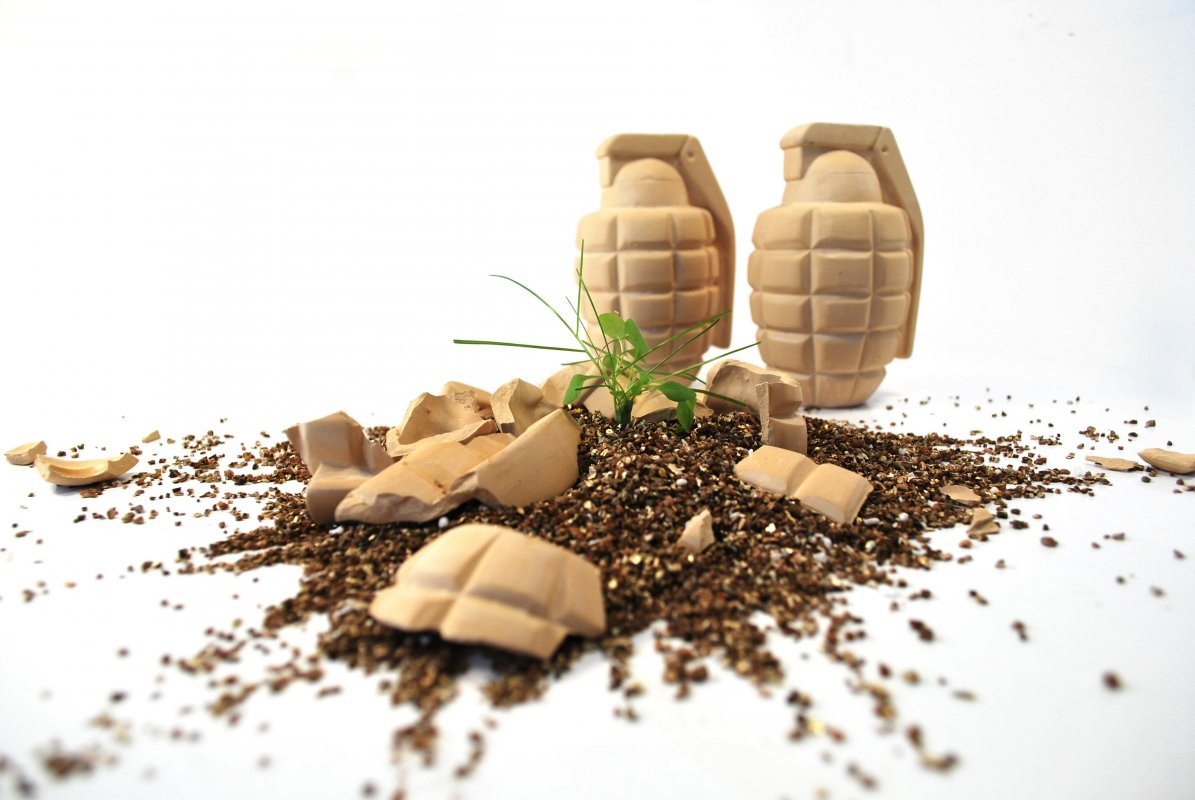 flower grenade bombs smash open to spread the seeds. Black Bedroom Furniture Sets. Home Design Ideas