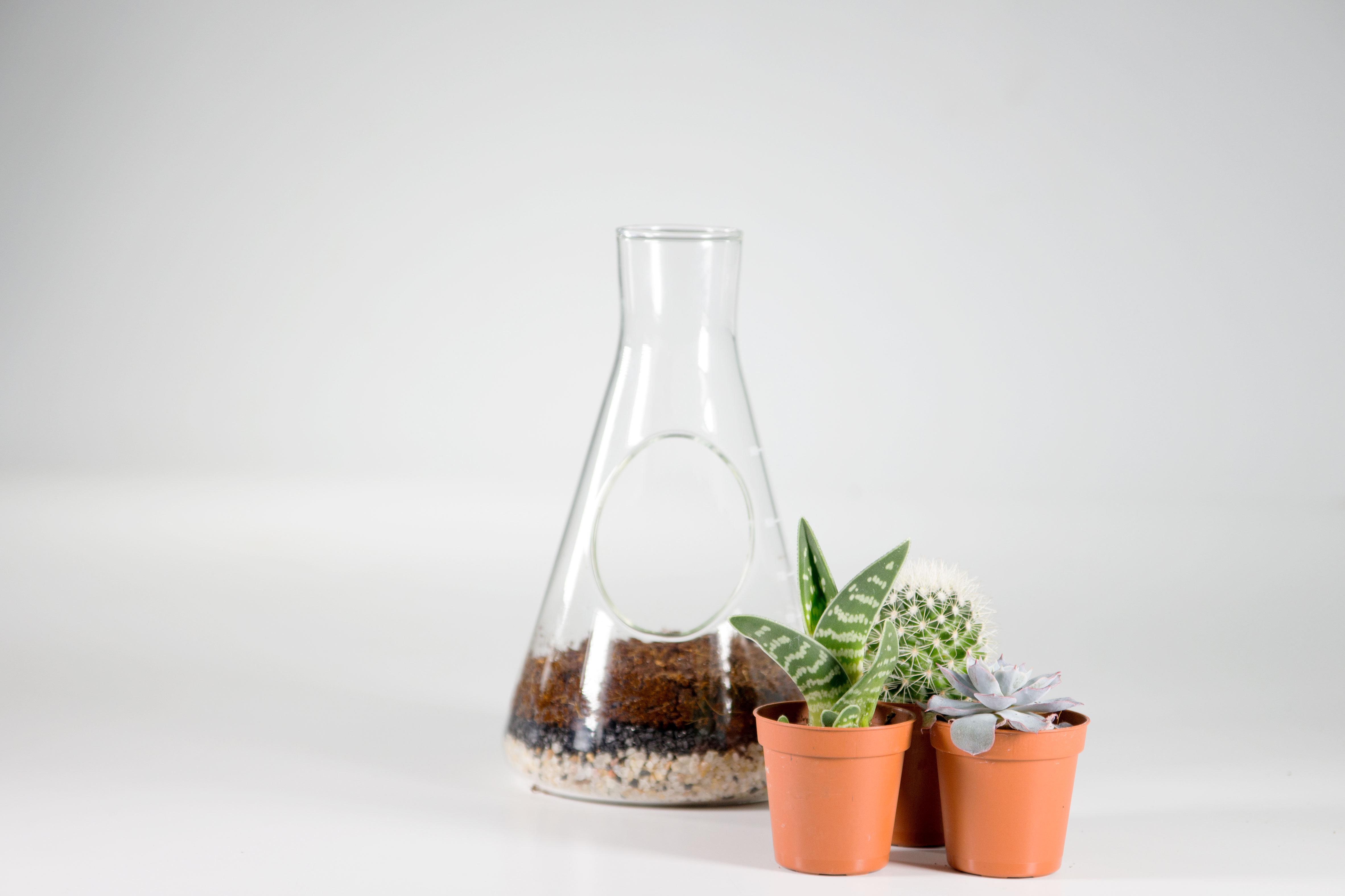 Chemistry Terrarium Kit Content Gallery Custom Lab Flask To Home A