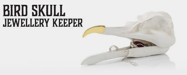 9f2f98200 Bird Skull : Jewellery keeper, for your most valued things.