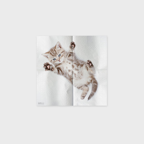 Cute Napkins With Cat Pictures