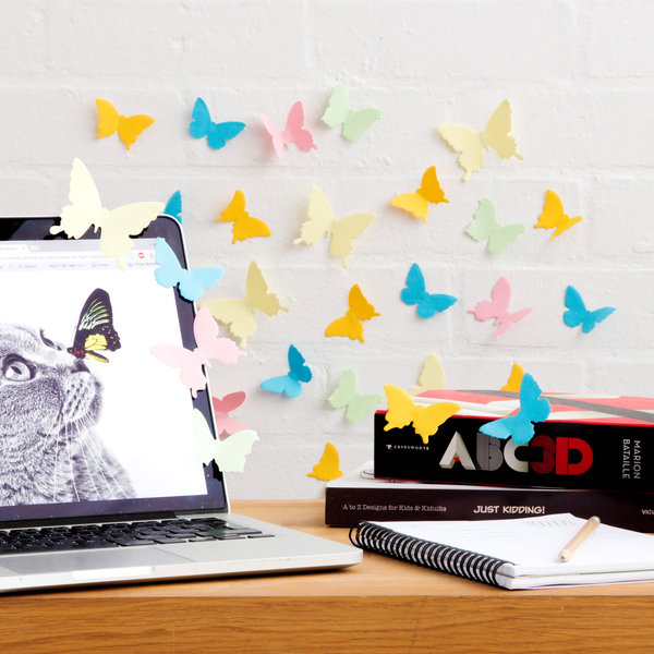 Butterfly speciemen sticky notes on desk and wall