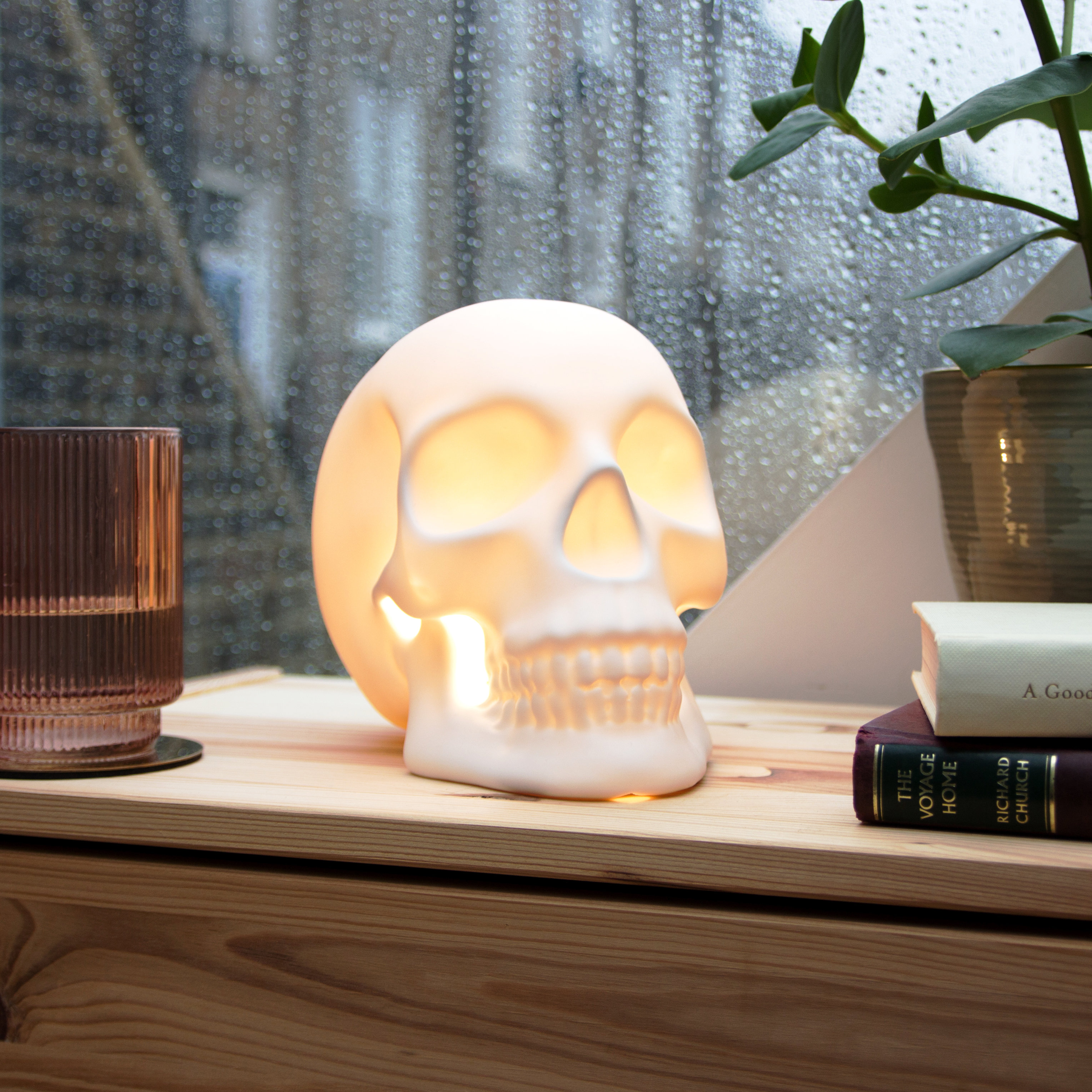 Skull lamp from front on bedside table
