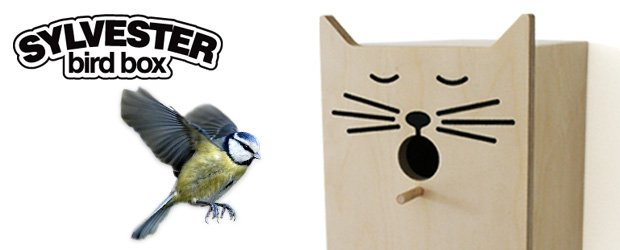 Plywood cat face bird box