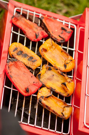 Portable toolbox grill