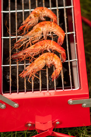 grilling prawns on BBQ Toolbox