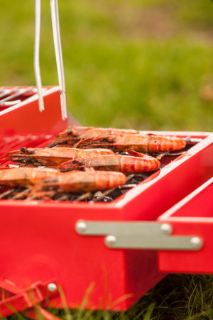 portable grilling with style