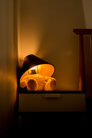 Teddy Lamp Dark