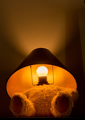 Teddy Lamp Dark Close