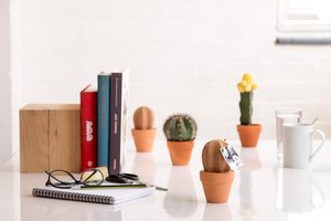 desk contents cork plant storage solution