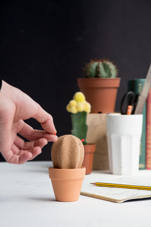 Cork Cactus Desktop Organiser / Pinboard with Ceramic Storage Pot and Red Push-pins Included
