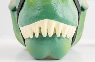 dino lunchbox closeup