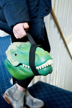 dinosaur sandwich container carried in hand
