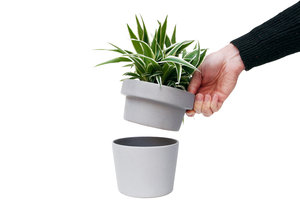hand lifting top of plant pot hideaway