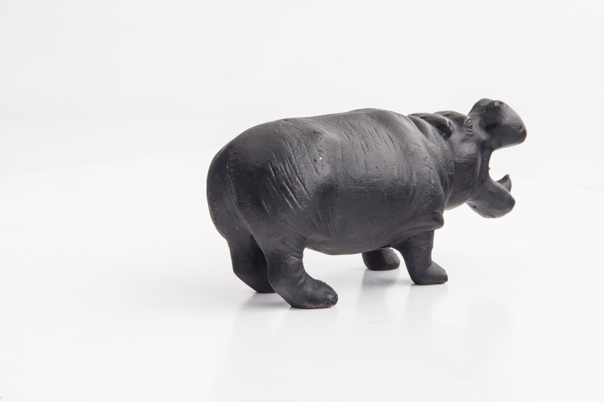 Hippo Bottle Opener : A bottle opener with serious bite.
