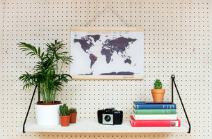 cross stitch map with a vintage camera and plants