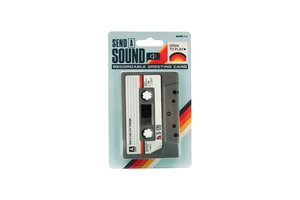 send a sound recordable greeting card in packaging