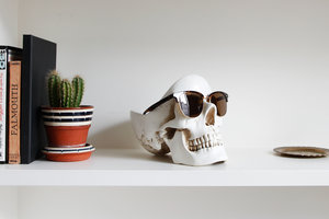 skull stuff for home