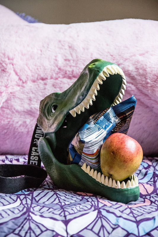 Dinosaur Lunch Box : Round up all your ROAR-some stuff
